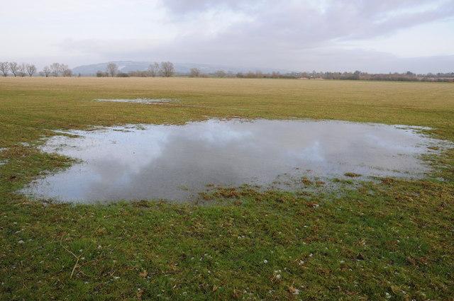 Pool of water in Cowham meadow