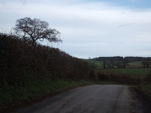 Minor road and fields south of Luton