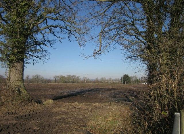 Frosty field by Horn Road