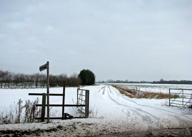 Snowy path near the edge of the fens