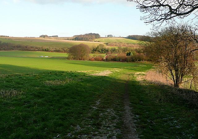 Towards Flinthall Farm