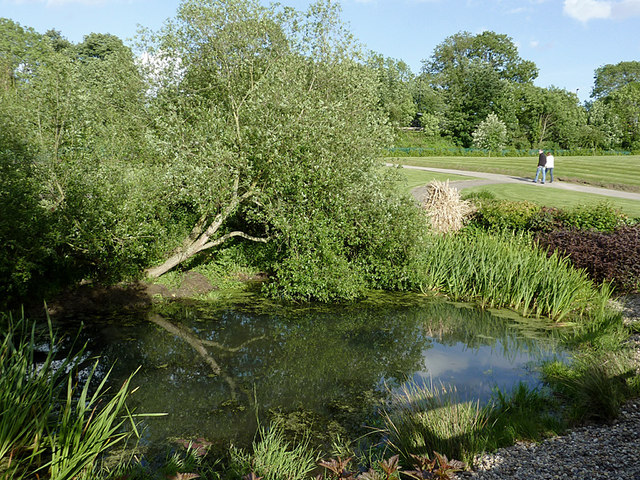 Pond in the Park at Penkridge, Staffordshire