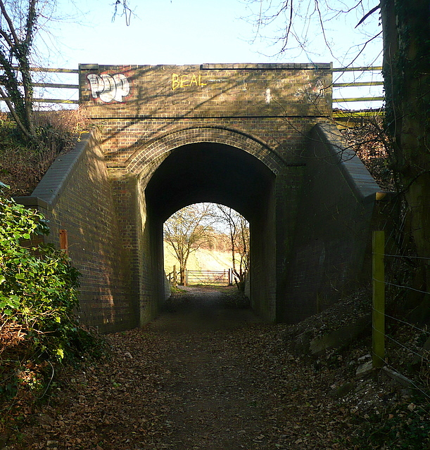 Footpath under the railway