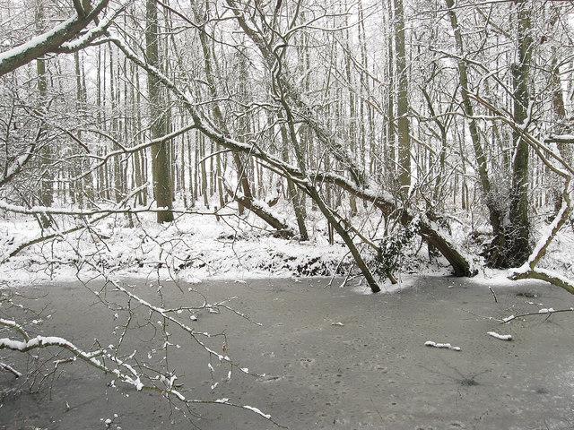 Frozen Pond near Willetts Stream