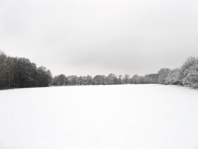 Old Mill Field