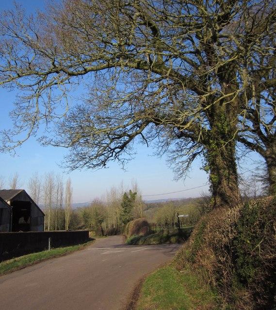 Junction at Bishops Farm