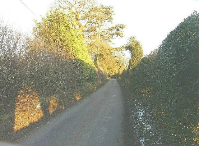 Section of lane near Henbury Lodge
