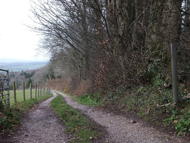 Track by Humber Down