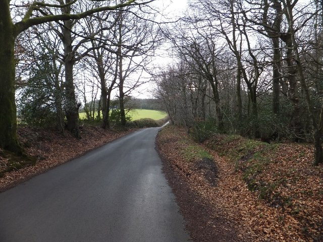 The road past Humber Down