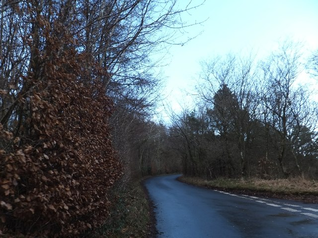 Minor road running north-east from Little Haldon junction