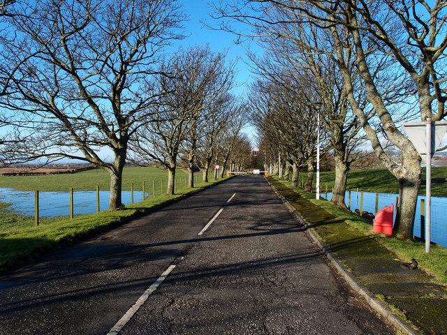 Access Road,  Hannah Research Institute, Ayrshire