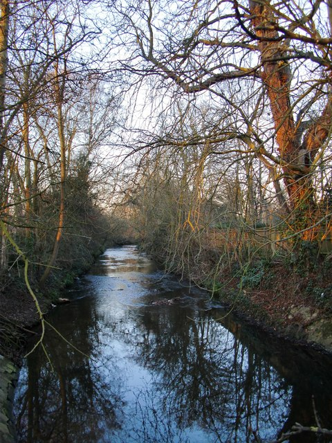 Beverley Brook by Palewell Common (4)