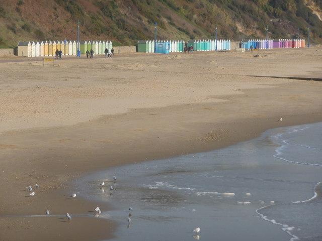Bournemouth: gulls on the shoreline