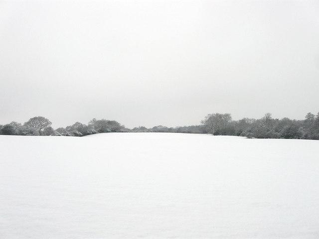 Elm Field/Four Acres