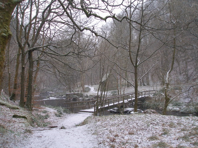 Footbridge in Walshaw Wood
