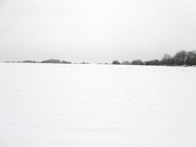 Sir John's Field