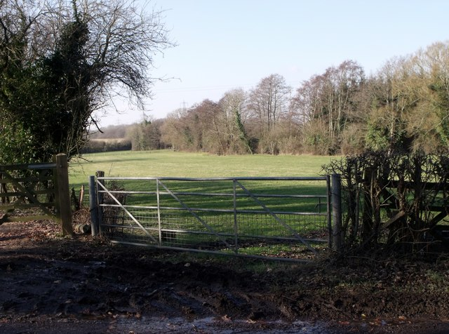 Metal gate, Windmill Hill, East Sussex