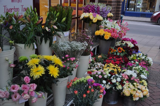 Tiverton : Flower Shop