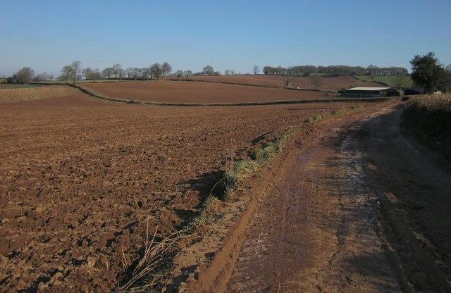 Red Devon soil, Highwood's Farm