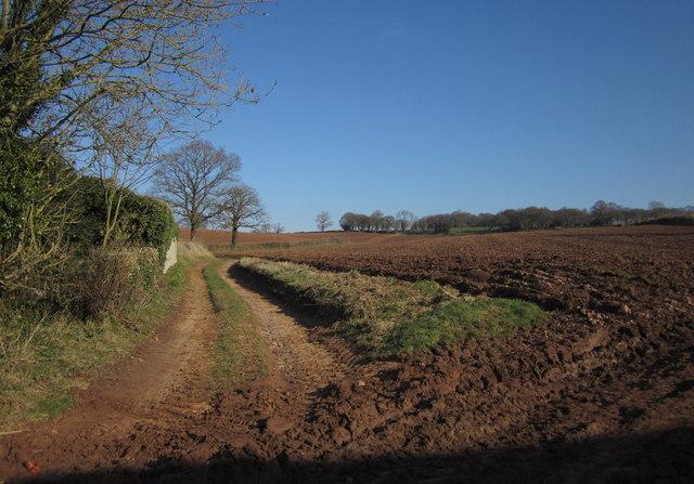 Footpath, Highwood's Farm