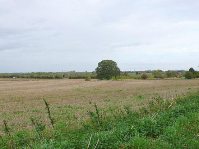 Fields near North Littleton