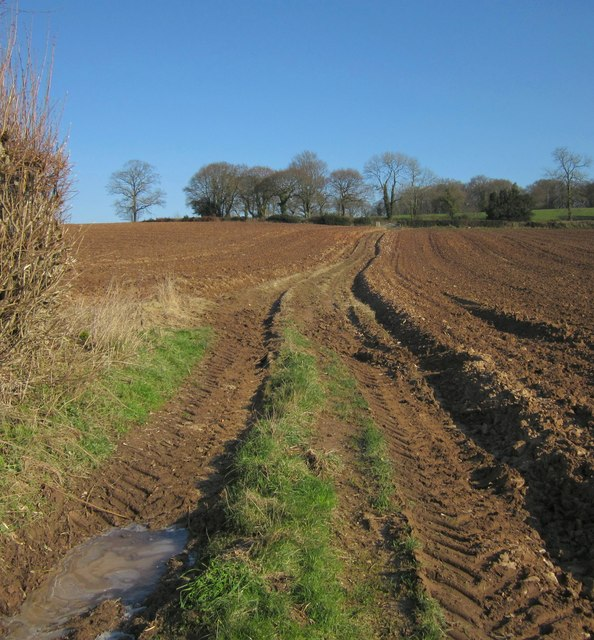 Path to Colly Down