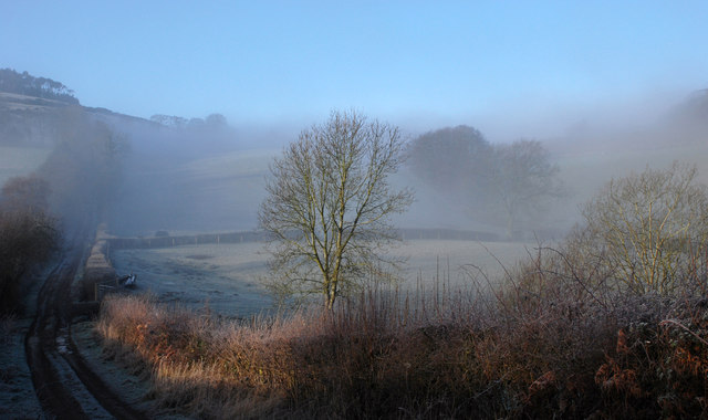 Misty morning near Bromlow