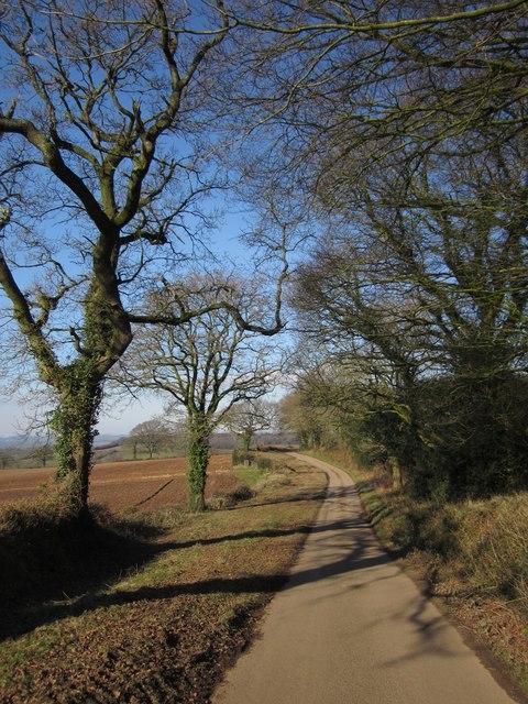 Lane below Colly Down Plantation