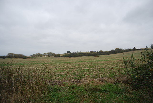 Farmland rising south of St Mary's Marshes