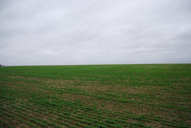 Farmland on Northward Hill