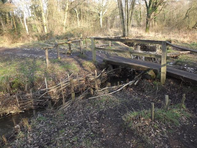 Footbridge on Whitmoor Common