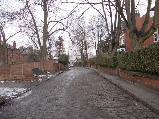 Vinery Road - looking towards Cardigan lane
