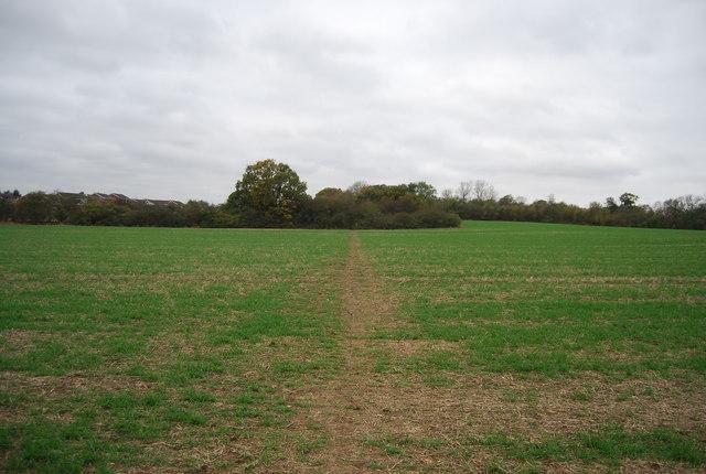 Saxon Shore Way crossing a field