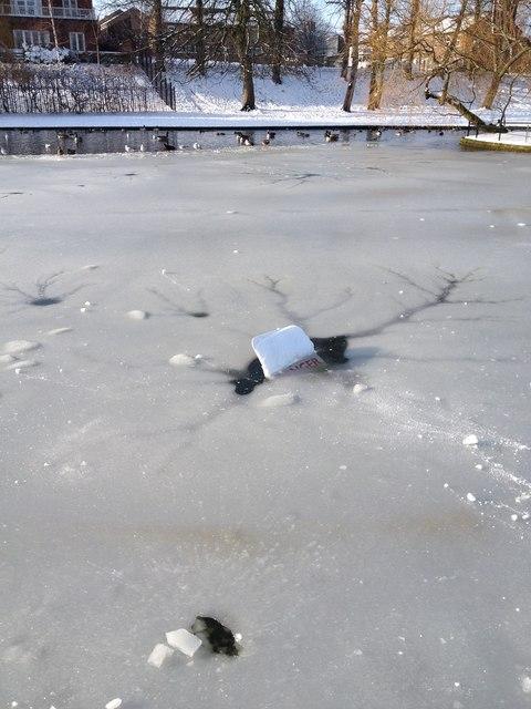 Danger, frozen pond, Rowntree park, York