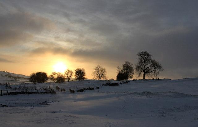 Sunrise Sacheveral Farm