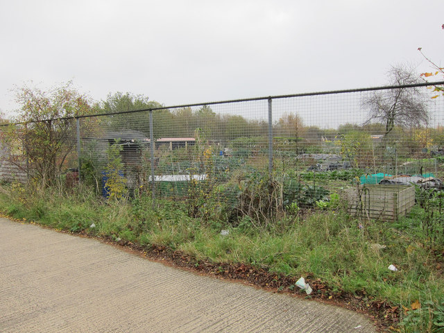 Nuffield Road allotments