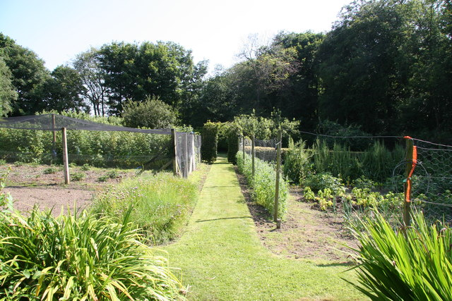 Vegetable garden, Drumblair House