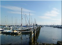 SZ3394 : Lymington Yacht Haven by Mike Faherty