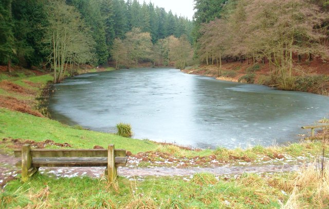 Lower Soudley Pond