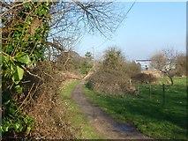 SZ3394 : Lymington, Pinkney Path by Mike Faherty