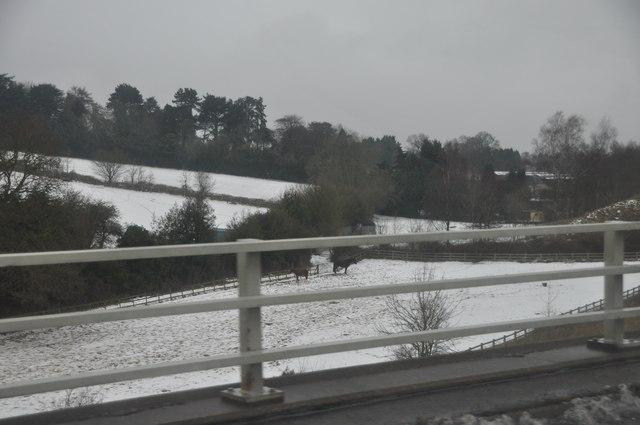 Bromsgrove : M5 Motorway Roadside