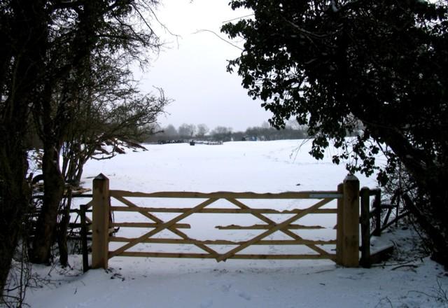Gateway into field off Wood Lane