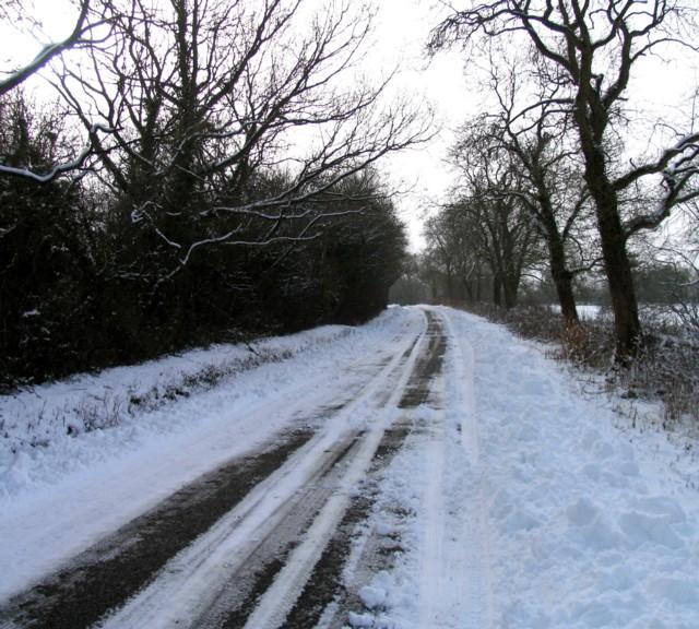 Wood Lane away from Braunston-in-Rutland