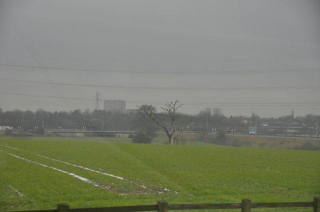 North Warwickshire : Grassy Field