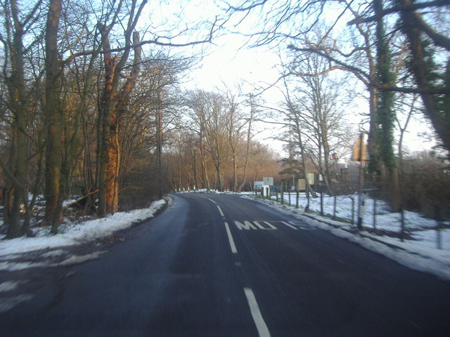 White Stubbs Lane by Bayford Boarding Kennels