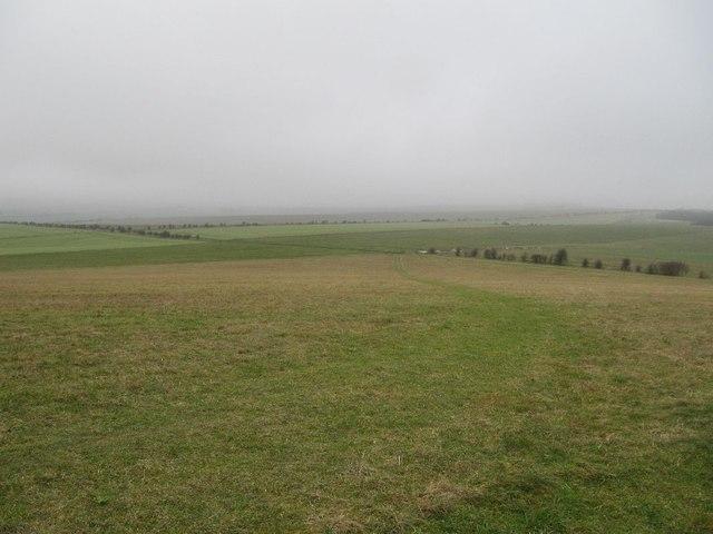 Down Lowbury Hill