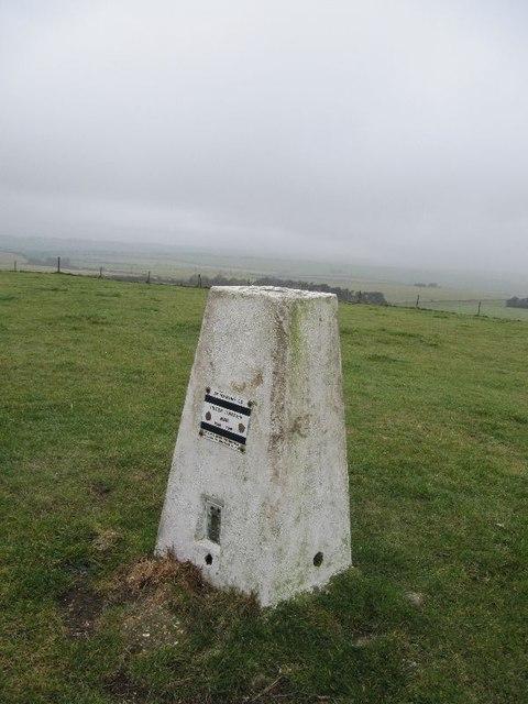 Pillar on the Hill