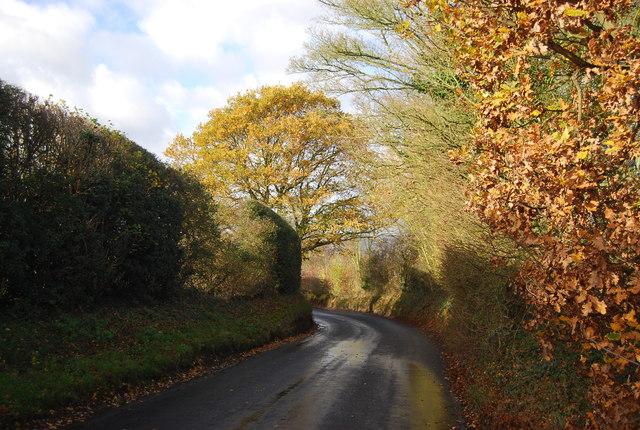 Autumn, Ewell Lane