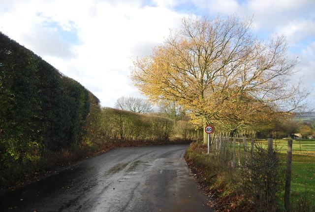 Ewell Lane