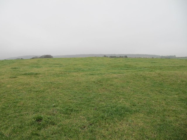 Top of Lowbury Hill